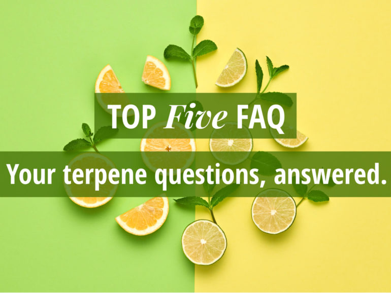 Top Five FAQ: Your Terpene Questions Answered