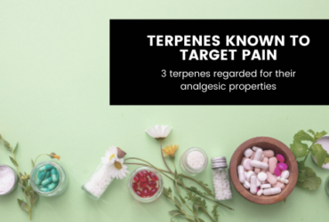 3 Terpenes Known to Target Pain and Inflammation