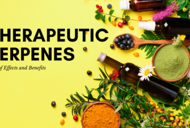 Therapeutic Terpenes List: Their Many Effects and Benefits